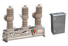 FDZ□系列交流高压自动分段器